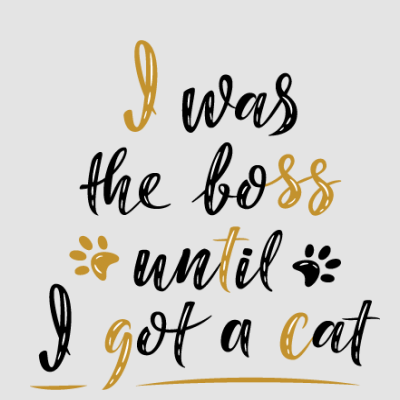 I Was The Boss Until I Got A Cat