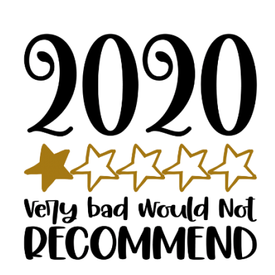 2020 Review Funny