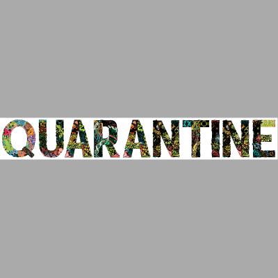 Hippie Quarantine
